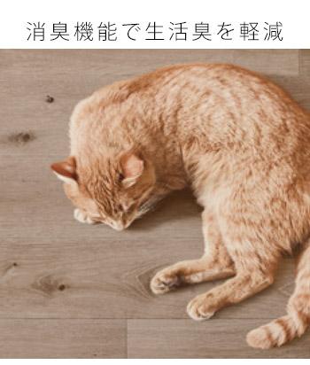 24時間吸着&消臭をしてくれるので、気になる生活臭やペットの臭いをリセット。ペットのいるご家庭にもおすすめです。
