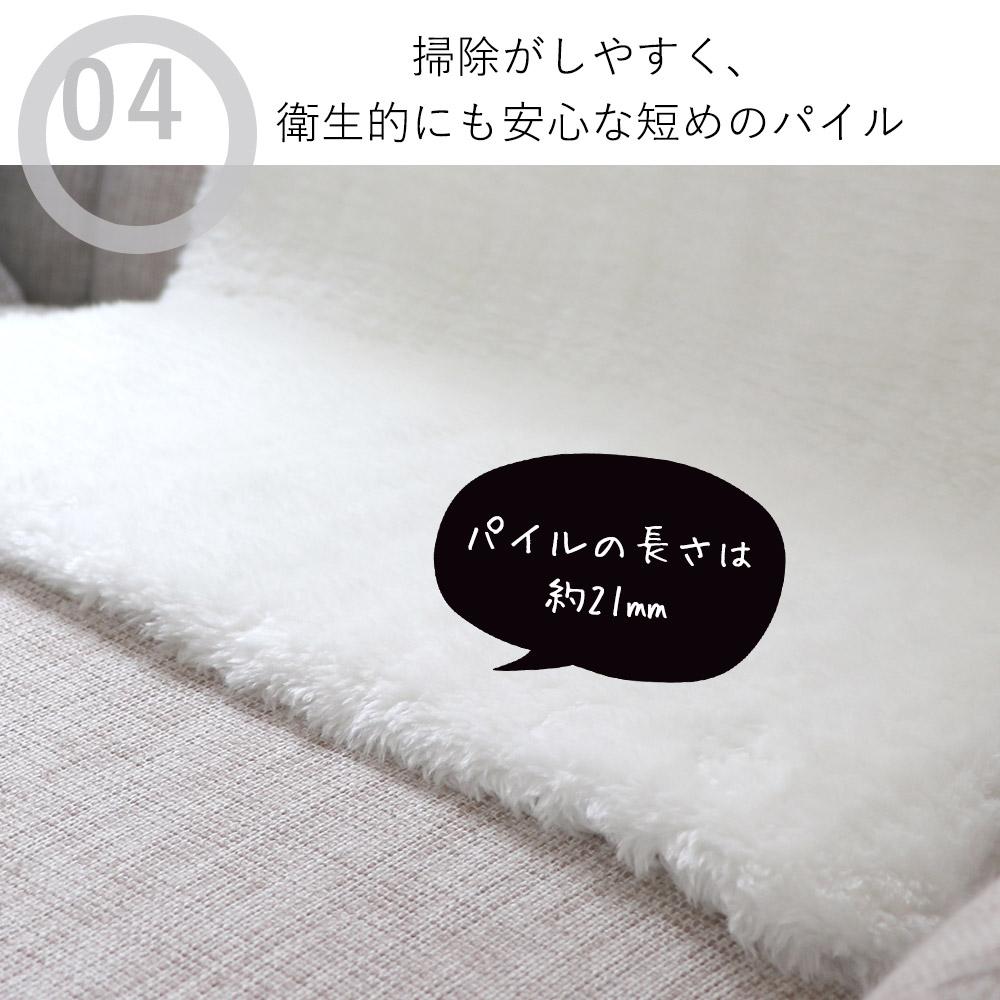 今大人気のローパイル(短い毛足)は、掃除がしやすいので衛生的にもGOOD