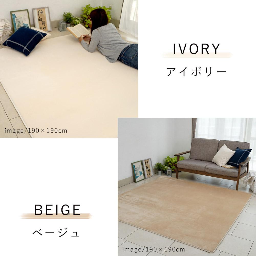 アイボリー/ベージュ