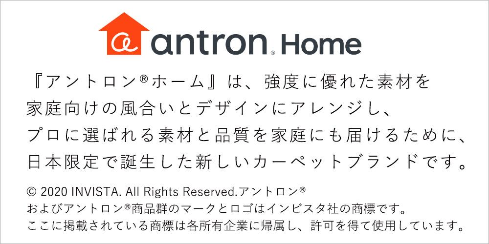 アントロンホームは強度に優れた素材を家庭向けの風合いとデザインにアレンジした日本限定で誕生した新しいカーペットブランド