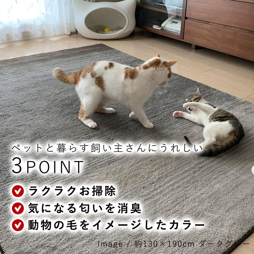 ペットと暮らす飼い主さんにうれしい、3つのポイント「ラクラクお掃除、気になる匂いを消臭、動物の毛をイメージしたカラー」