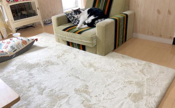 <span>猫の抜け毛掃除がラクなラグで、ふわふわでかわいいラグ</span>今年の新作ラグは、そんなワガママも叶えるラグです!