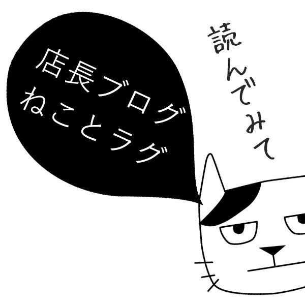 店長ブログ~ネコとラグ~
