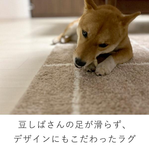フローリングが滑って怖い。足腰負担の対策と、柴犬の換毛期お掃除対策に。